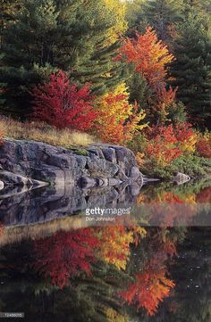 Stock Photo : Canada, Ontario, Killarney Provincial Park, red maples in autumn reflect in lake