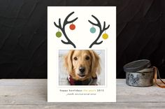Happy Howlidays by Lisa Cersovsky at minted.com