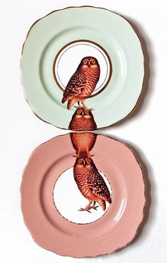 Owl plates by yvonneellen on Etsy, $54.00. YUM! these plates/teacups are so bizarre and fun. I'd be the happiest girl alive if I got something like this for a housewarming or wedding gift.