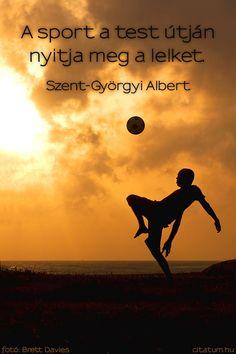 Szent-Györgyi Albert #idézet