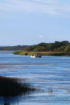 St Lucia Estuary, east coast of KwaZulu-Natal, South Africa / Лагуна Сан Люша, Восточное побережье провинции Квазулу - Натал, ЮАР