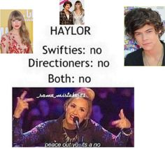 """I'm going to rant for a second. Feel free to skip this. So I am getting angry at the hate Taylor and Harry are receiving. I'm not exactly for haylor but I'm sick of everyone saying """"No! They shouldn't be together!!"""" They are real people too!!! If they are happy then freaking leave them alone!! I  just think they are free to do what they want. So back off!! Ok. Rant over. Thanks for reading!"""