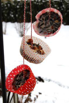 www.kommee.com | Buitenspelen | Zelf vogelvoer maken... zoek een receptje en wacht op de vogeltjes!