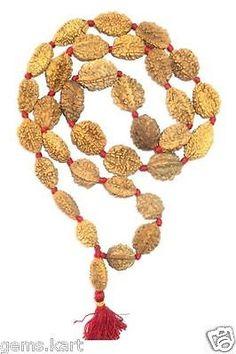 27246f1c84dd Seed 179272  Natural 2 Mukhi Rudraksh Kantha Ardhnarishwar Siddha Mala  Rosary -33 Beads -  BUY IT NOW ONLY   30 on eBay!