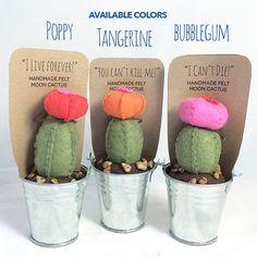 Moon Cactus Felt Succulent Plant Plush Plants por TreefortFiveShop More