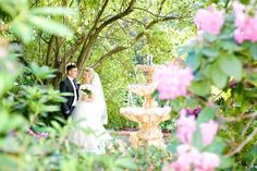 gorgeous colour in the gardens Wedding Venues, Gardens, Colour, Wedding Dresses, Photos, Wedding Reception Venues, Color, Bride Dresses, Wedding Places