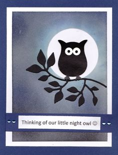 Night owl for Erika