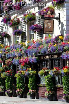 Churchill Arms Pub, Kensington