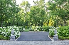 Entry driveway with short accent columns and white hydrangeas in bloom make for a lovely entrance.