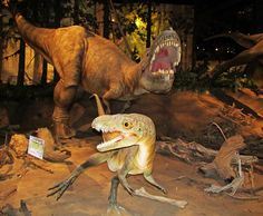 Dinosaurs at the Royal Tyrrell Museum in Drumheller, Alberta, Canada