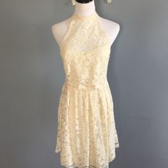 Nwot Free People lace mini dress Never worn. Super cute but need the size 2 Free People Dresses Mini