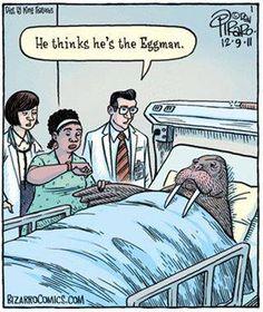 I AM THE EGGMAN.... THEY ARE THE EGGMAN... I AM T H E W A L R U S (coo-coo ca-choo!)