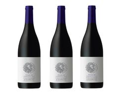 Waterkloof releases maiden Seriously Cool Cinsault 2012  read more--> http://www.wine-style.co.za/news-events/wine-news/item/185-waterkloof-releases-maiden-seriously-cool-cinsault-2012.html
