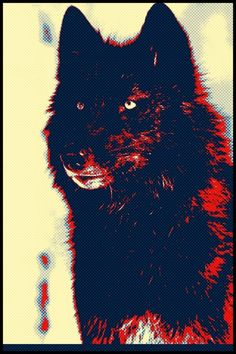 . wolves