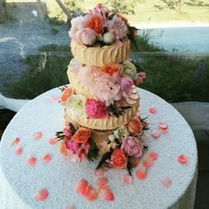 nice Vancouver Island Wedding Mmmm #weddingcake. #wedding #farmhouse #farmwedding #westcoastwedding #vancouverislandweddings #ciderhouse #ciderhousewedding #rusticwedding #westcoastrustic  #vancouverwedding #vancouverweddingcake #vancouverislandwedding #vancouverweddingdosanddonts