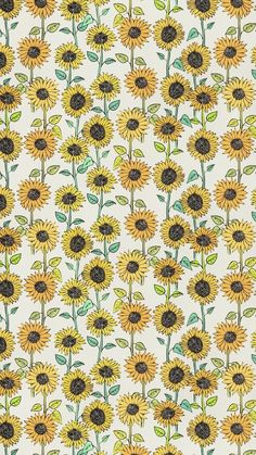 Sunflower wallpaper, sunflower pattern, pattern flower, cute backgrounds, p Cute Backgrounds, Cute Wallpapers, Wallpaper Backgrounds, Wallpaper Art, Iphone Backgrounds, Desktop Wallpapers, Wallpaper Quotes, Iphone Hintegründe, Iphone Android