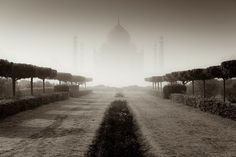 The Taj Mahal, Uttar Pradesh, (Pin, Share & Like with The Tour Planners) Woke up early morning to catch the mist rising over Agra. © Photo and caption by Tomasz Wagner, National Geographic Photo Contest 2010 National Geographic Adventure, National Geographic Photo Contest, National Geographic Photography, Agra, National Geographic Wallpaper, Le Taj Mahal, Vanishing Point, Pretty Backgrounds, Photography Contests