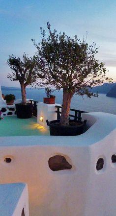 Olive Tree Sunset, Oia, Santorini  #workout #fitnessscience #latrainer #travel