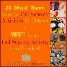 20 Must Have Items for Fall Sensory Activities for Children  +  Pinterest Board Idea Roundup! - 10 Days of Fall Fine Motor & Sensory Activities for Children from Golden Reflections Blog