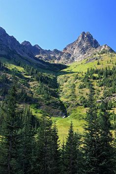 Mountain scenery, North Cascades