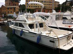 Bertram 28 in Italy  #sportfishing #yacht