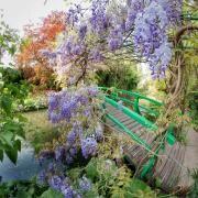 Giverny - Le Jardin D'Eau  Fondation Claude Monet