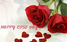 Happy Rose Day 2018 Wishes, Messages, Images, Rose Day Status Red Rose Love, Cute Rose, Hj Story, Feliz Gif, Miss You Mom, Whatsapp Dp Images, Beautiful Flowers Wallpapers, Wishes Messages, Tough Day