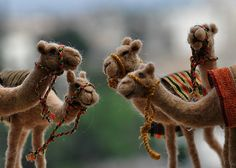 Needle felted Camel- wool soft sculpture