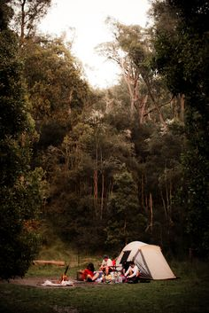 Would love to camp here- could imagine it at spring time- cool in the morning and evening hours but perfect during the day. Ahh heaven.