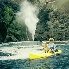 Tips on kayaking with your dog! I need these cuz we can't get our pups to sit still.