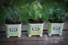 Turn your trash into your next treasure! Empty food tins quickly become a colorful home to your new herb garden!