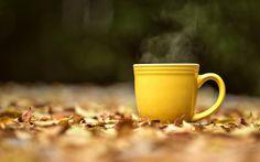 Protikvasinková dieta – podrobný přehled potravin a přírodní léčby