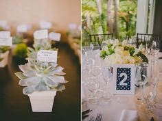 Succulent Favors / Escort Cards and Green Wedding Reception Centerpieces