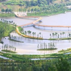 """Turenscape transforms """"lifeless ditch"""" into  wetland park with meandering causeways"""