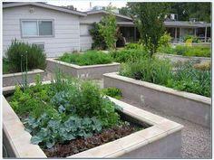 Nice looking concrete block raised beds. building-a-raised-bed-with-concrete-block.jpg (645×485)