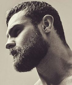 I want that moustache and beard replicated as a lace beard, together with a lace wig in his hair style. Awesome combination- would very happily wear that all day every day. It is a 'feel good' beard.