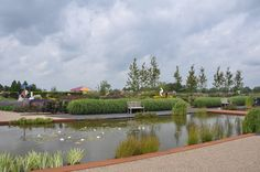 De tuinen van Appeltern / The gardens from Appeltern. Own pictures