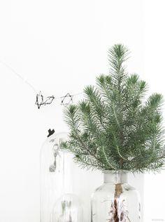 #kerstboom #christmas