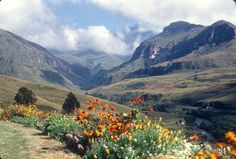 Drakensberg mountains...a slice of heaven on earth.