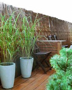 Mata wiklinowa to naturalny sposób na osłonę w ogrodzie i działce. Można zastosować jako osłona na balkonie lub jako dekoracja.
