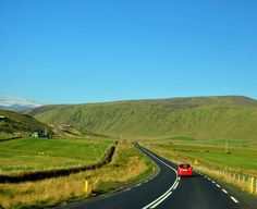 Iceland's Ring Road travels through farm fields dotted with sheep and cattle.