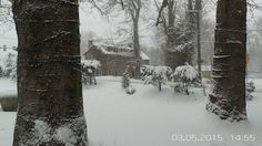 Winter at Bridgetown Mill House http://bridgetownmillhouse.com/ #winter #oldmill #bmh