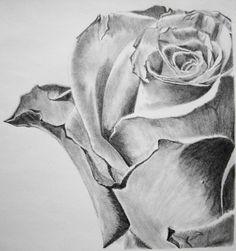 творческий арт | рисунки карандашом людей: карандаш художественная галерея Ольги