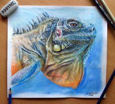Lizard Color pencil Drawing by AtomiccircuS.deviantart.com on @deviantART