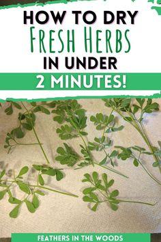 Preserve Fresh Herbs, Garden Plants, Herb Gardening, Herb Pots, Organic Herbs, Tea Blends, Grow Your Own Food, Growing Herbs, Medicinal Herbs