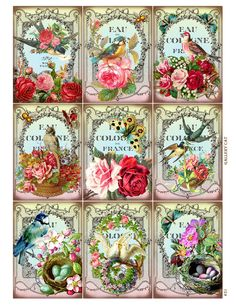 Vintage Birds and Bees Digital Collage Sheet by GalleryCat on Etsy