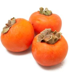 Non-GMO!!  Non-treated (AWESOME!!!) Jiro, Fuyu Persimmon, Tree (Standard)  (BEST ORGANIC SEEDS & non-GMO FRUIT TREE WEBSITE EVER!)