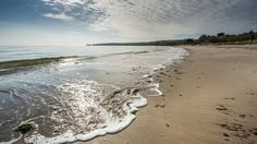National Trust, Studland. Knoll, Middle and South Beaches, free parking
