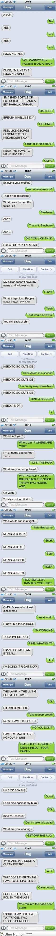 Hilarious texts from Dog. The first good ones from  Dog.