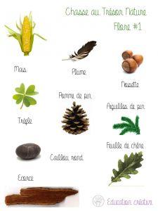 Fiche Trésor Nature Flore2